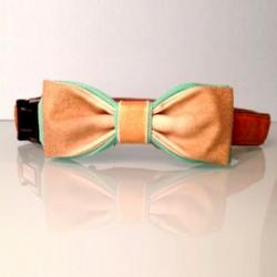 Diy Tutorial Fancy Dog Bow Tie