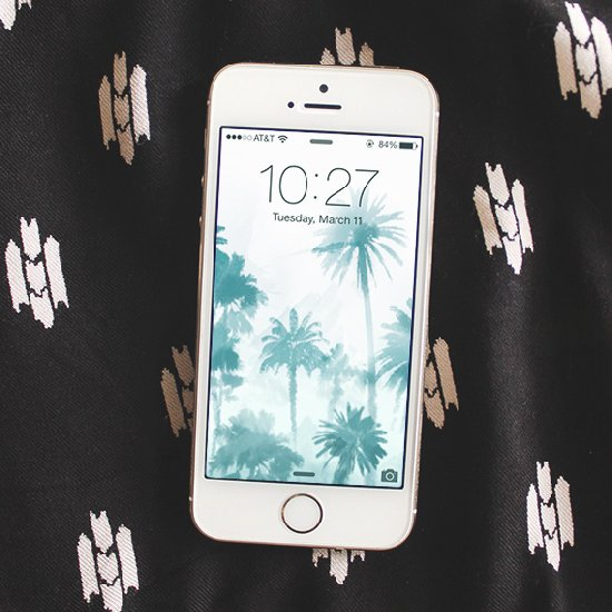 TumblrShare On Email Free Palm Tree IPhone Wallpaper