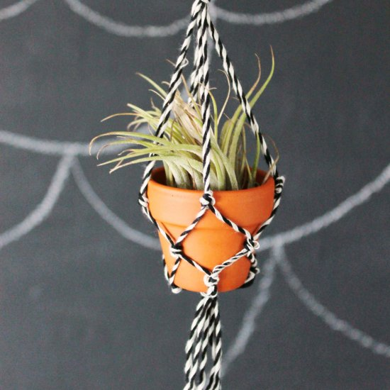 25 Diy Plant Hangers With Full Tutorials Diy Crafts