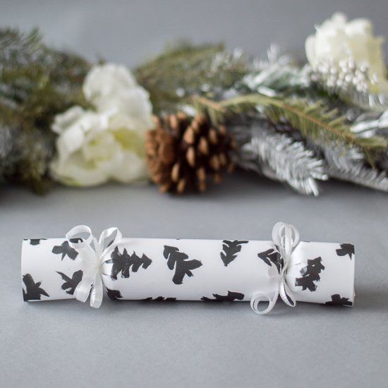 Christmas crackers gallery craftgawker diy christmas crackers solutioingenieria Choice Image