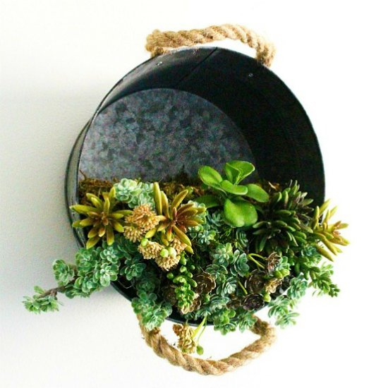 Galvanized Bucket Succulent Planter