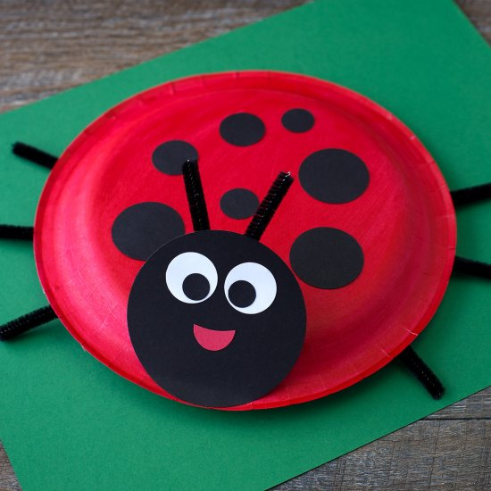... Paper Plate Turtle Craft & ladybugs gallery | craftgawker