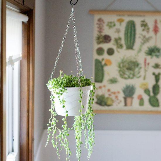 DIY hanging plastic pot makeover