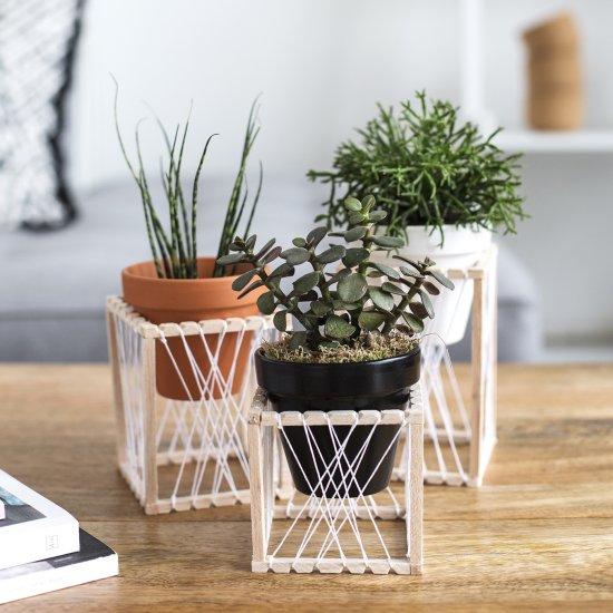 DIY House Plant Holders