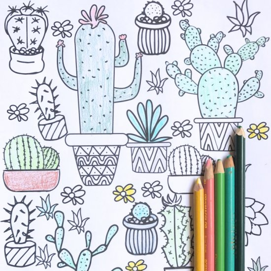 succulent coloring pages craftgawker