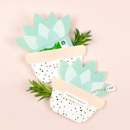 Succulent Gift Card Holder