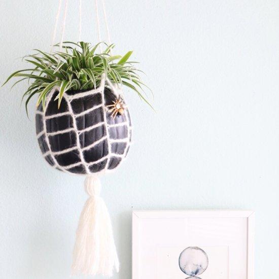 Webbed Hanging Planter